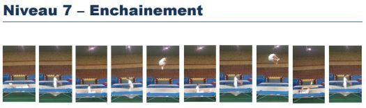 evolutramp-lsc-trampoline-niveau-7